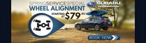 Spring Service Special - Wheel Alignment - Homeslider