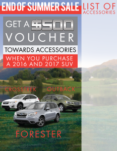 Accessories-Voucher---BGImage