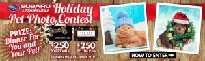 Holiday Pet Photo Contest - Homeslider